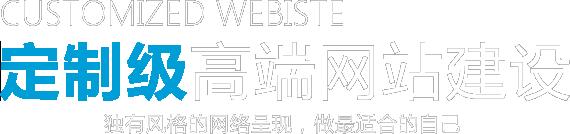 定制级高端网站建设